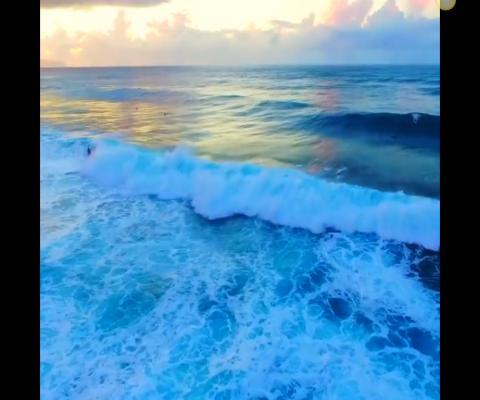 Island Style Oahu – Hawaiian Islands